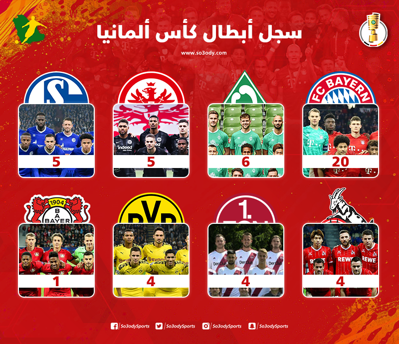 سجل أبطال كأس المنيا