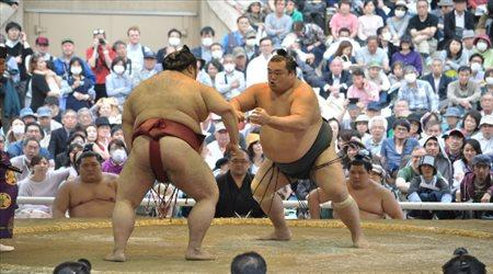 وفاة مصارع ياباني بضربة قاتلة في مباراة سومو